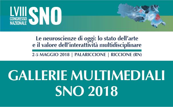 banner-sno-2018