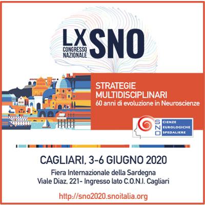 banner-sno-2020
